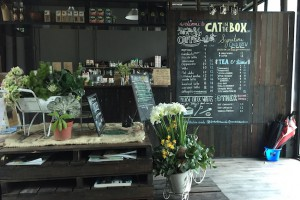 Cat in the Box cafe in Empire Damansara. Photo: Ling Low.