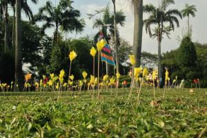 Malaysian Spring